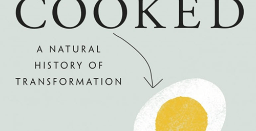 A Natural History of Transformation